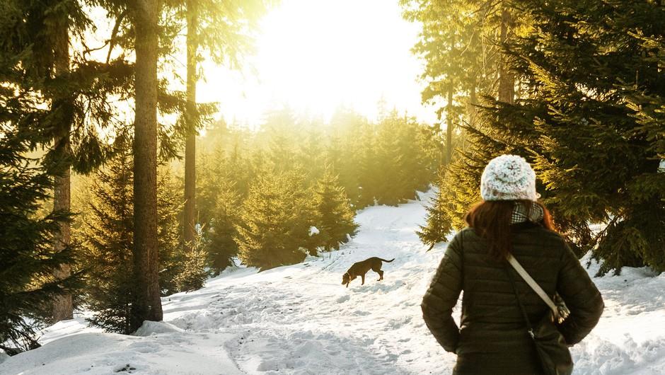 Zimski izlet v naravo vrne življenju potrebno svetlobo (foto: pixabay)