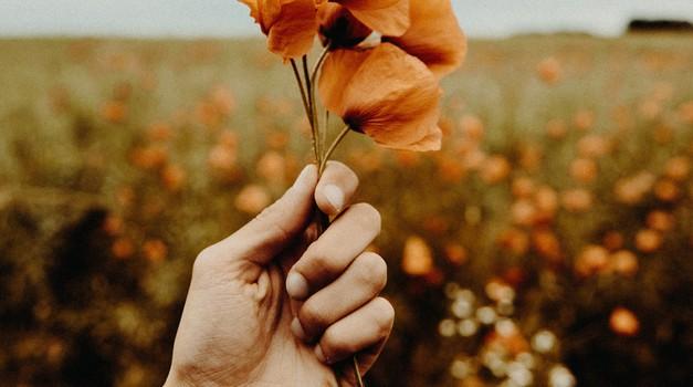 5 stvari, ki slabijo naše srce (foto: unsplash)