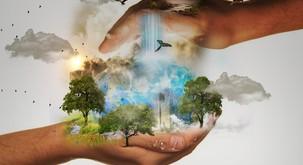 Kako lahko najbolj inteligentno bitje uničuje ta planet?