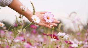 Od zunaj lahko dobimo nasvete in podporo, a glavno orodje je v naših rokah