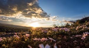 Sporočilo za današnji dan: Opazujte lepote Zemlje