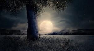 Tokratna polna luna gre v globino