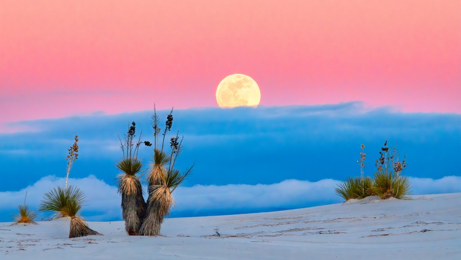 Polna luna v strelcu (17. junij) (foto: unsplash)