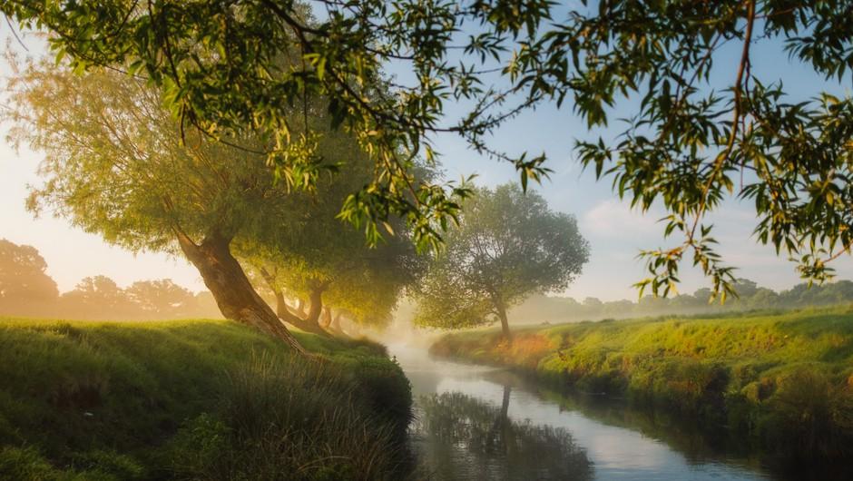Sporočilo za današnji dan: Bodi v naravi (foto: unsplash)