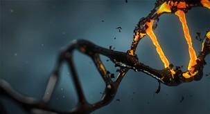 DNK lahko spreminjamo z besedami in frekvencami