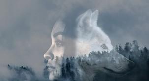 Kdor napačno razume volkove in ženske