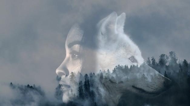 Kdor napačno razume volkove in ženske (foto: pixabay)