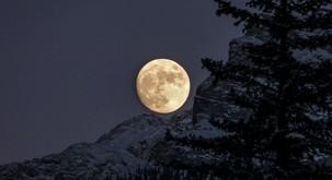 Polna luna v biku prinaša obilje
