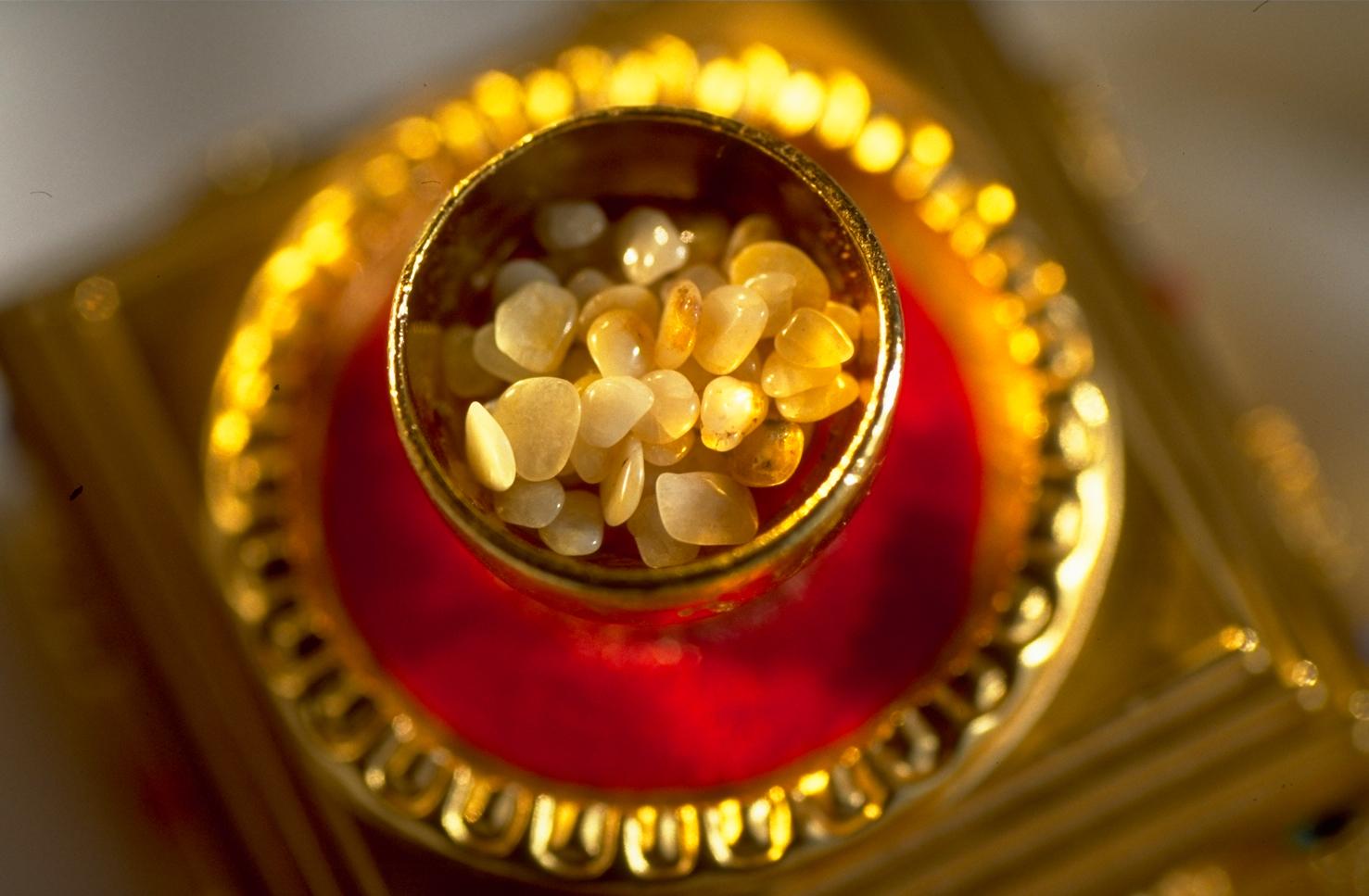 Razstava Budovih relikvij za mir in sočutje
